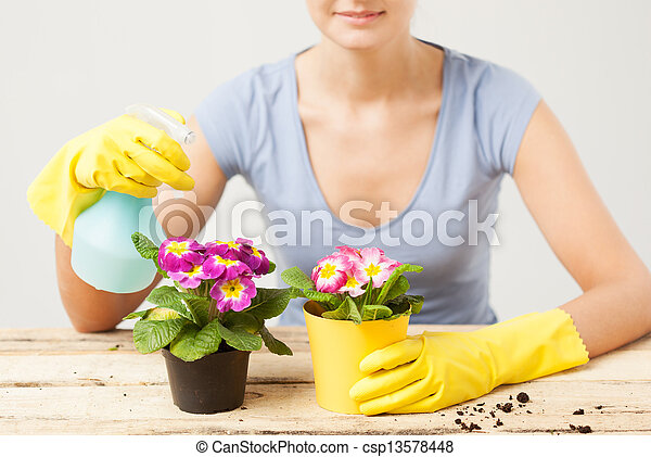 housewife with flower in pot and spray bottle
