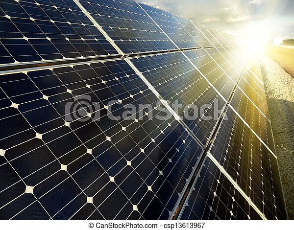 pflanze, macht, energie, sonnenkollektoren, gebrauchend, erneuerbar - csp13613967