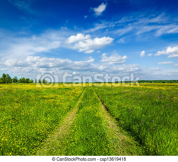 Spring summer - rural road in green field scenery lanscape  - csp13619418