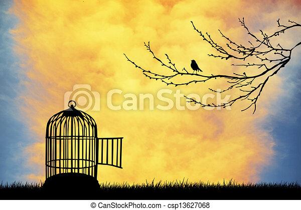Bird cage - csp13627068