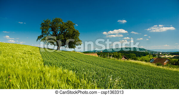 panorama of rural scenery - csp1363313