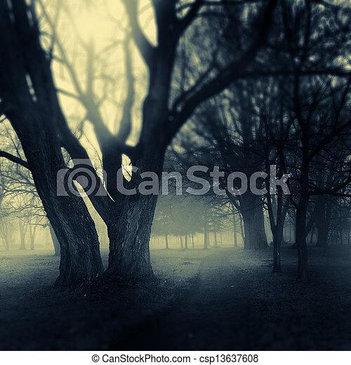 Foggy park path - csp13637608
