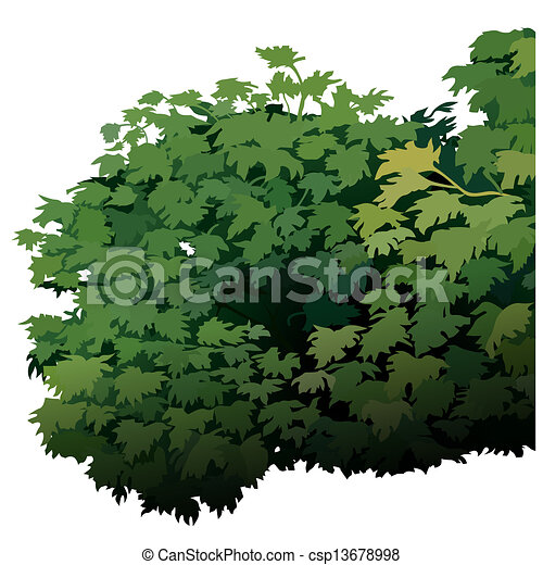 EPS Vectors of Shrub -... Yellow Hibiscus Clip Art