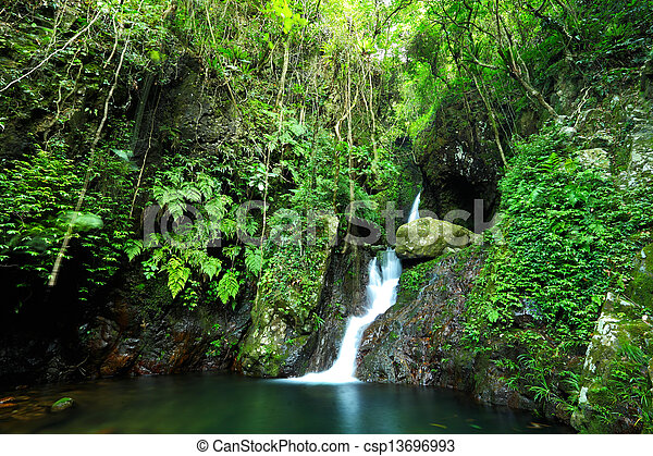 waterfall in forest - csp13696993
