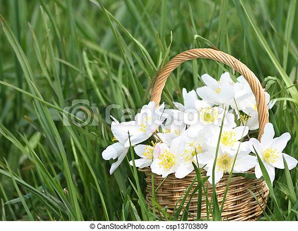 Basket of wild spring flowers - csp13703809