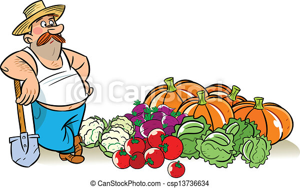 Vectors Of Vegetable Harvest The Illustration Shows A