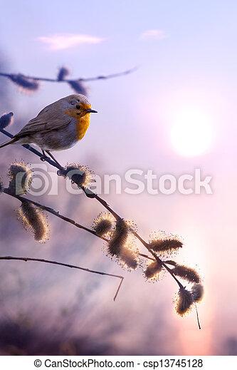 art beautiful spring morning nature background - csp13745128