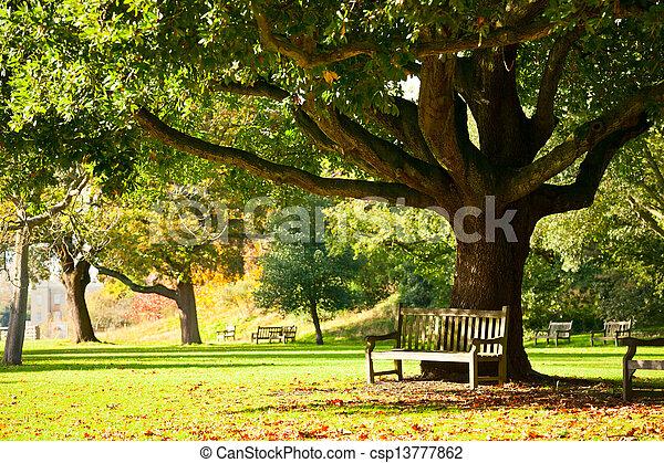 Kew Gardens park - csp13777862