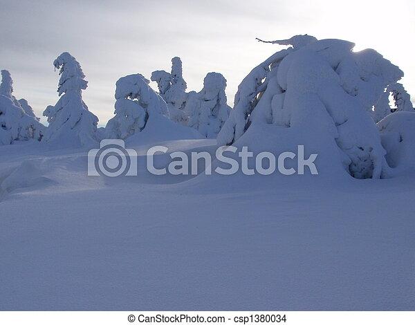 Winterwonderland - csp1380034