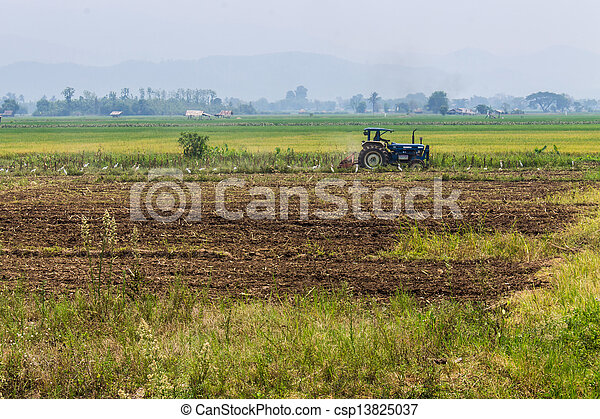 Agriculture plowing tractor on wheat cereal fields - csp13825037