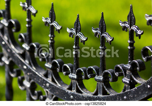 Iron Fence Detail - csp13825824