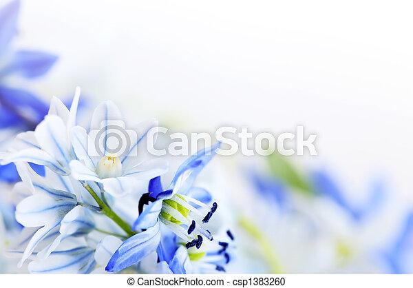 primavera, flores, fundo - csp1383260