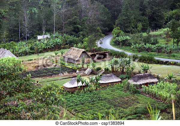 Papua New Guinea Highlands Village scene with pristine gardens, Papua New Guinea - csp1383894