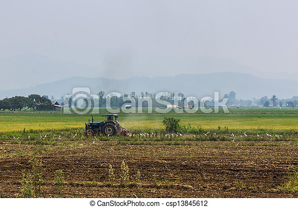 Agriculture plowing tractor on wheat cereal fields - csp13845612