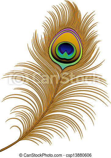 Vector Clipart of Peacock Feather over white. EPS 10, AI, JPEG ...