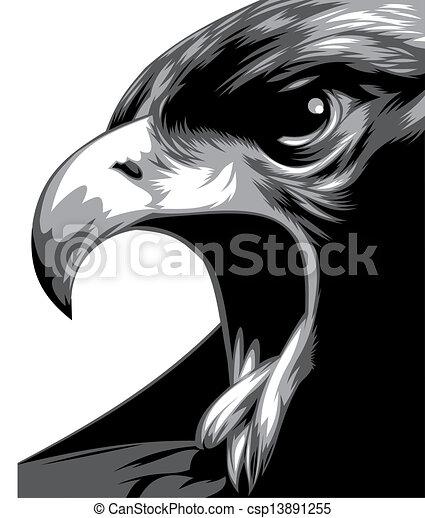 Vecteur clipart de t te de aigle dans noir et blanc for Dessin graphique noir et blanc