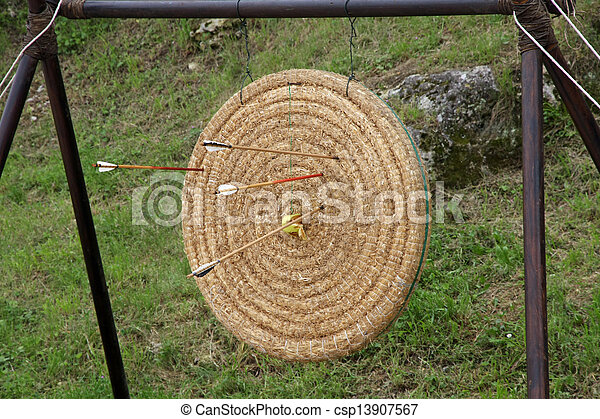 shoot arrows from a bow that struck the target circle