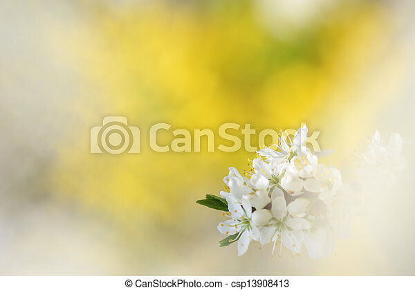 Abstract springtime background with apple tree blossoms - csp13908413
