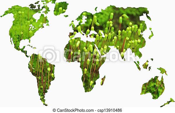 world map concept