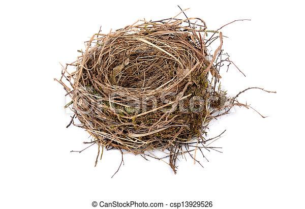 empty birds nest - csp13929526