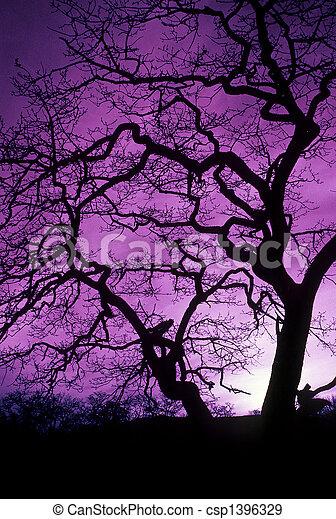 infared, bizarre unusual weird strange unearthly uncanny dreamlike phantasmagorical backlight backlit uplands park, victoria, bc, canada, garry oak - csp1396329