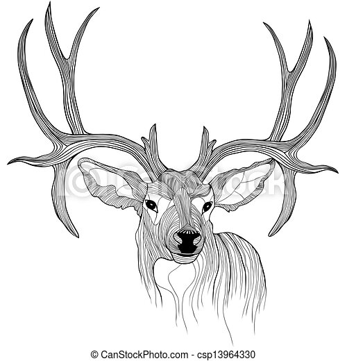 B00AVGCTOI likewise 110103 156979 090053 additionally Rothirsch moreover Hirsch Kopf Vektor Tier Illustratio 13964330 likewise Flower tattoo. on deer clipart