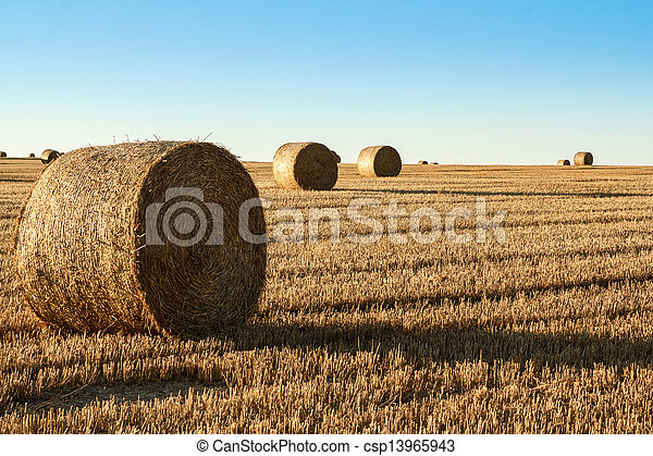 hay bale in the foreground of rural field  - csp13965943