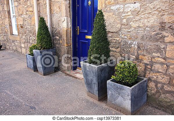 Photo plante d cor devant maison image images photo libre de droits photos sous - Plante de maison ...