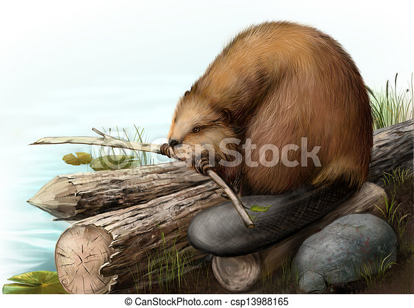 Illustration of beaver sitting on a log - csp13988165