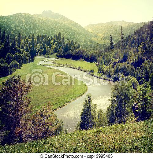 Nature-24 - csp13995405