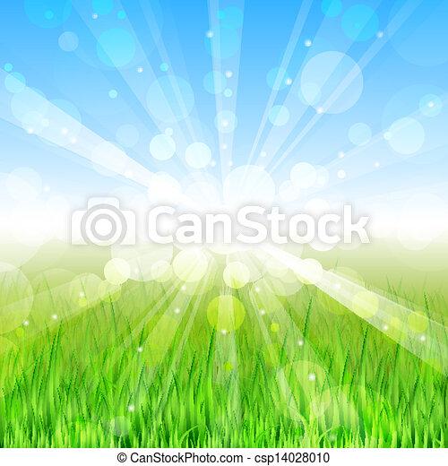 Summer day - Vector background - csp14028010