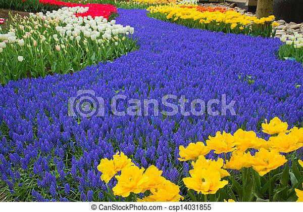 Banco rio flores