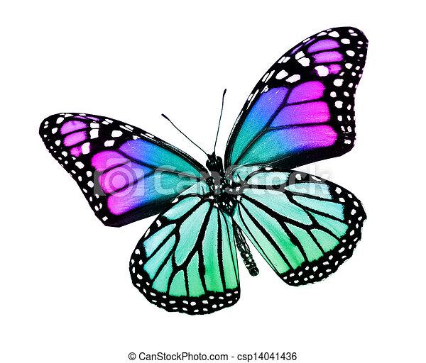 , royalty-vrije... Free Clipart Downloads Butterflies