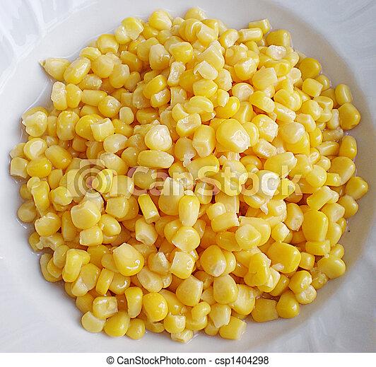 corn - csp1404298