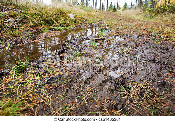 Stock Photography Of Mud Puddle A Mud Puddle On A Forest