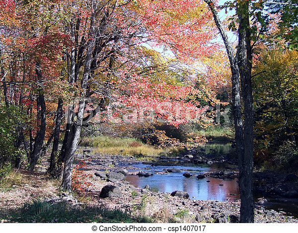 Maine Countryside pond in fall - csp1407017