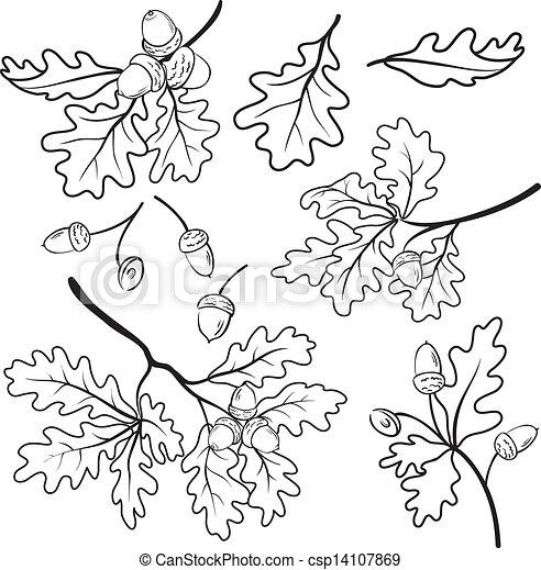 Clipart vettoriali di quercia rami ghiande contorno - Foglia canadese contorno foglia canadese ...