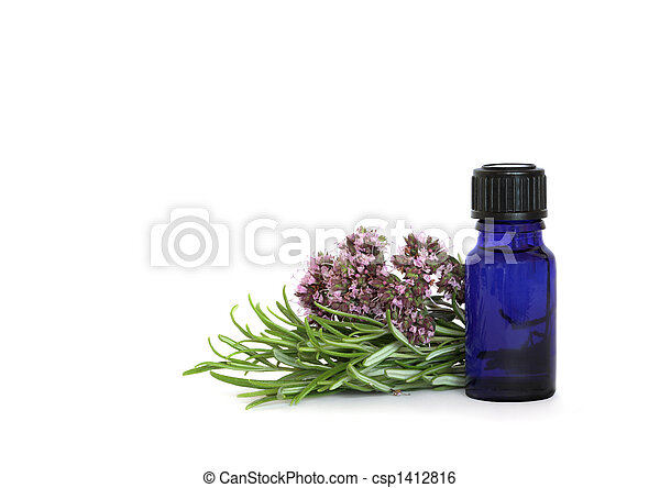 Rosemary and Marjoram Herbs - csp1412816