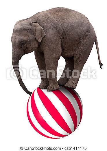 赤ん坊, ボール, 象 - csp1414175