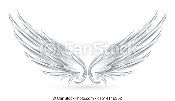 Wings White, eps10 - csp14146352