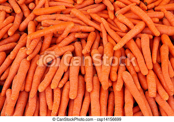 ripe carrot - food background - csp14156699