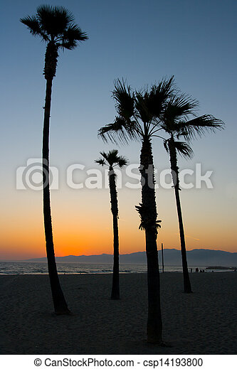 Venice Beach Sunset - csp14193800