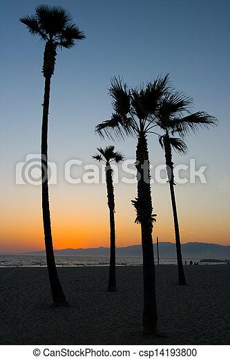 Venice Beach Sunset - csp14193800