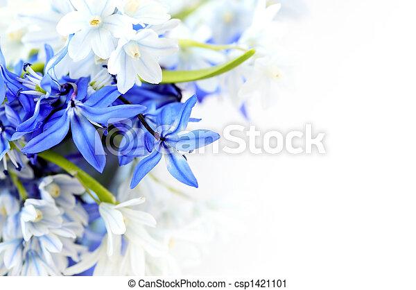 Spring flowers background - csp1421101