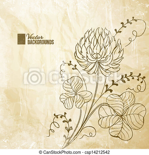 White Clover Drawing Clover Flowers Isolated