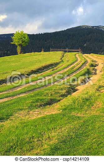 Rural road and lone tree in the Carpathian Mountains - csp14214109