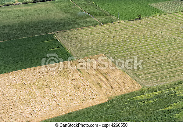 Aerial view of green fields in rural landscape - csp14260550