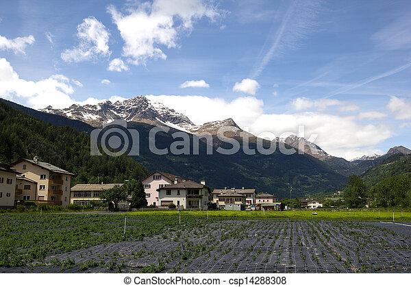 agriculture in Switzerland - csp14288308