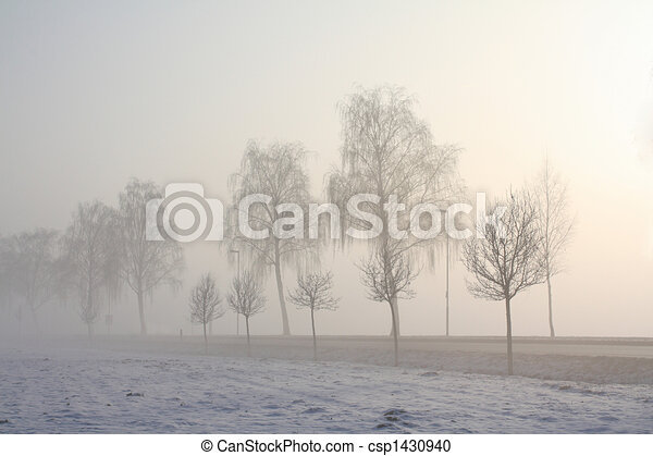 snow field in fog - csp1430940