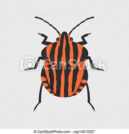 Shield Bug Drawing Vector Shield Bug